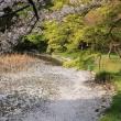 2018 桜花爛漫の古都への旅 その3(4/3 再び京都を巡る)