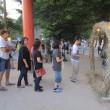 ⑤ 塩屋神社 夏祭り : 夜の帳