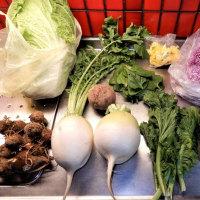 野菜の収穫祭??