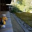 「京の冬の旅」。本阿弥光悦の菩提寺。長谷川等伯などの作品の特別公開。「本法寺」