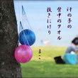 琵琶湖の思い出