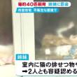 猫約40匹を虐待した姉妹に罰金10万円略式命令