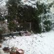 ■ 大雪/どーなるやら