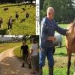スイスの夏〜2017 (その6)カルト新牧場