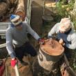 植木伐採の実践