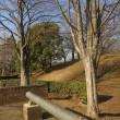 散歩道⑨(根ケ谷戸公園)(2)