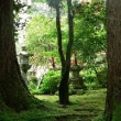梅雨の那谷寺