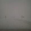 雪の日に、出歩くということは・・
