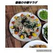 小松菜美味しい(^O^)2匹のトイプーお泊まり!