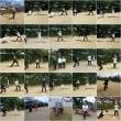 シニアソフトボールクラブ、22名を写真に纏めました。