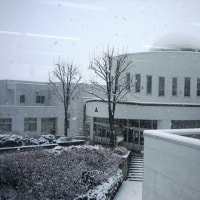 一日、雪が降りました。