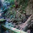 『谷戸川渓谷』 石橋・奇岩