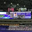 お盆休みの最後の日は、横浜X中日戦を見てきました。