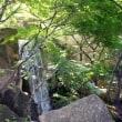 徳川園(29年9月7日)