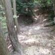 我が家の裏山の一徳坊を越えて岩湧へ行き、更に紀見峠へ行く予定を途中で変更帰宅するも20キロの道のりでした。2017年5月21日その1