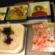 All Nippon Airways Economy Class