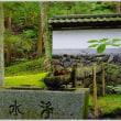 信州の苔寺 「貞祥寺」(3の2)  ★ 2018.09.26 ★