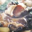日本茶道塾東京初釜 平成二十九年