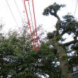 我が家を横切る電線