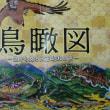 鳥瞰図でたどる大正 昭和の旅