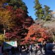 高尾山2017