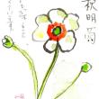 10月の絵手紙 Masakoさまから