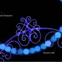 夢の続き・・・  Miyuki Katayama  写真展