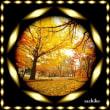 短い秋の日