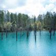 北海道美英町白金 青い池 風景写真 / Sony α7RII