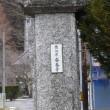 一関市東山町のクロチク(黒竹) 2018年1月19日(金)