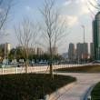 「国盛中心」ショッピング・グルメモール(長風公園エリア)