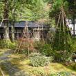 久し振りの雄山神社