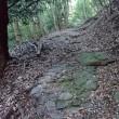 古処山を行く。道に迷い山中を彷徨う。