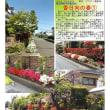 埼玉-730 香日向の春①