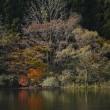 鳥海山のある風景(晩秋の大潟溜池)