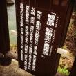 鹿児島で滝を見る&豚さん食べる(⌒▽⌒)