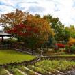 堺市・大泉緑地の風景・・・5