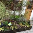 美容室ブルグリの花壇