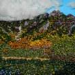 (841) 上高地 大正池からの明神岳