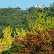 紅葉進む松山城公園周辺