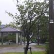 ノロノロ台風にイラつく
