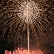2014年8月23日 藤岡市制施行60周年記念花火大会