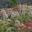 初めて天守閣に登りました!・・・大阪城 展望台
