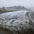 雪が降ってきた!!!!