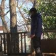 第996回板橋ロールコール東京都板橋区赤塚公園辻山地区2018年1月21日(日)13:00~EB成功です!