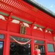 湖上の社!赤城神社が美しい!(その2)美麗な社殿と不思議な樹