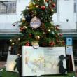 クリスマスツリー巡り✨🎄✨