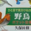 また本(野鳥図鑑・うさぎの漫画)を買ってしまった