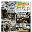 散策 「東京北西部-125」  自由学園明日館