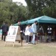 浜松城公園中央芝生広場の犬猫譲渡会